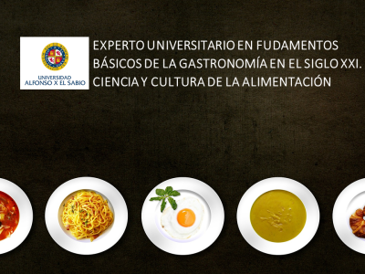 Fundamentos Básicos de la Gastronomía
